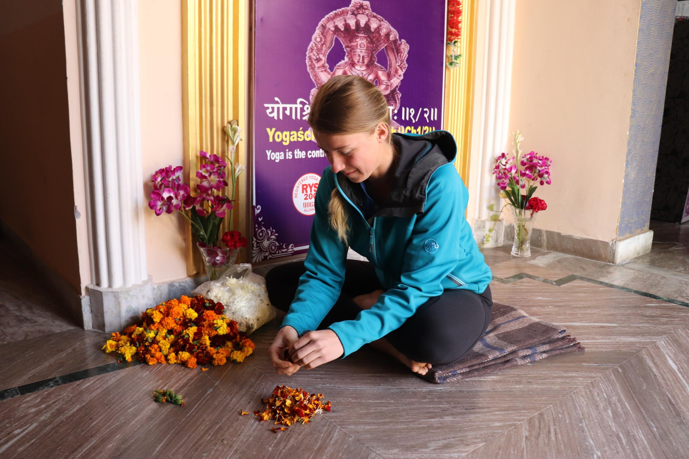Hari Om Yoga vidya school-SchoSys.com