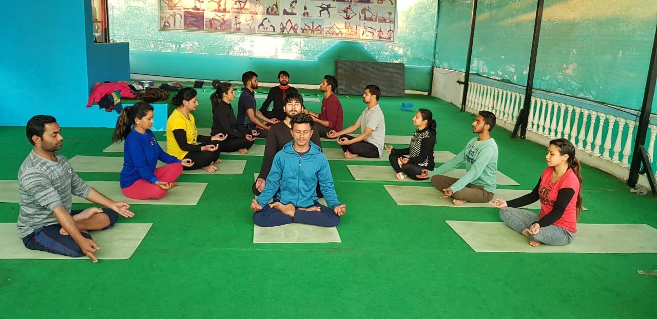Hariom Yoga School-SchoSys.com