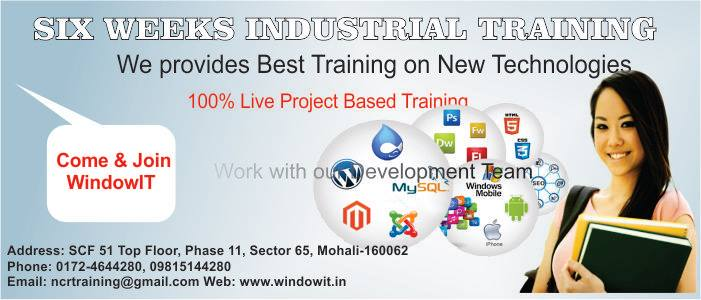 Windowit Six Months Industrial Training in Chandigarh-SchoSys.com